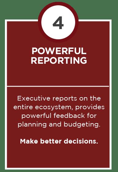 Powerful reporting
